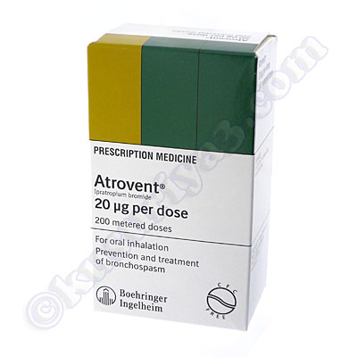 septilin for fever